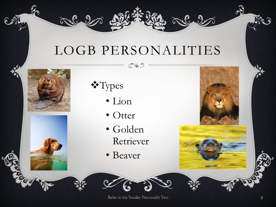 LOGB PERSONALITIES Types Lion Otter Golden Retriever Beaver 5 Refer to the Smalley Personality Test