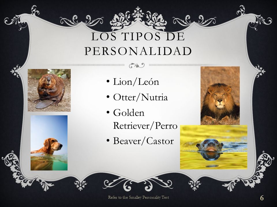 LOS TIPOS DE PERSONALIDAD Lion/León Otter/Nutria Golden Retriever/Perro Beaver/Castor 6 Refer to the Smalley Personality Test