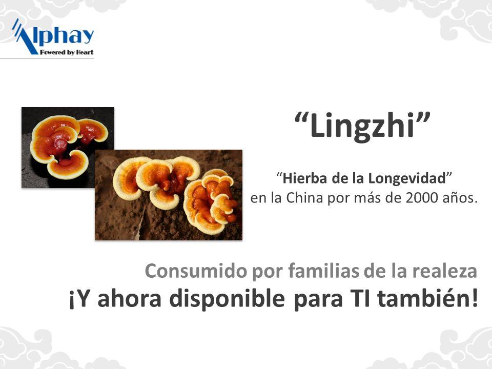 Hierba de la Longevidad en la China por más de 2000 años. Lingzhi Consumido por familias de la realeza ¡Y ahora disponible para TI también!