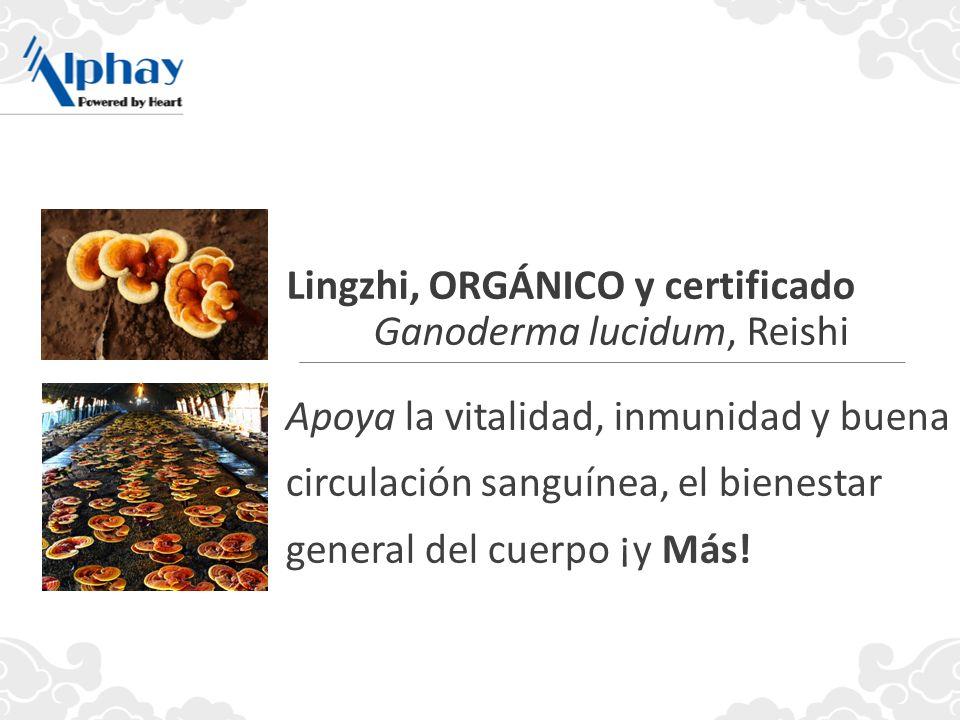 Apoya la vitalidad, inmunidad y buena circulación sanguínea, el bienestar general del cuerpo ¡y Más! Lingzhi, ORGÁNICO y certificado Ganoderma lucidum