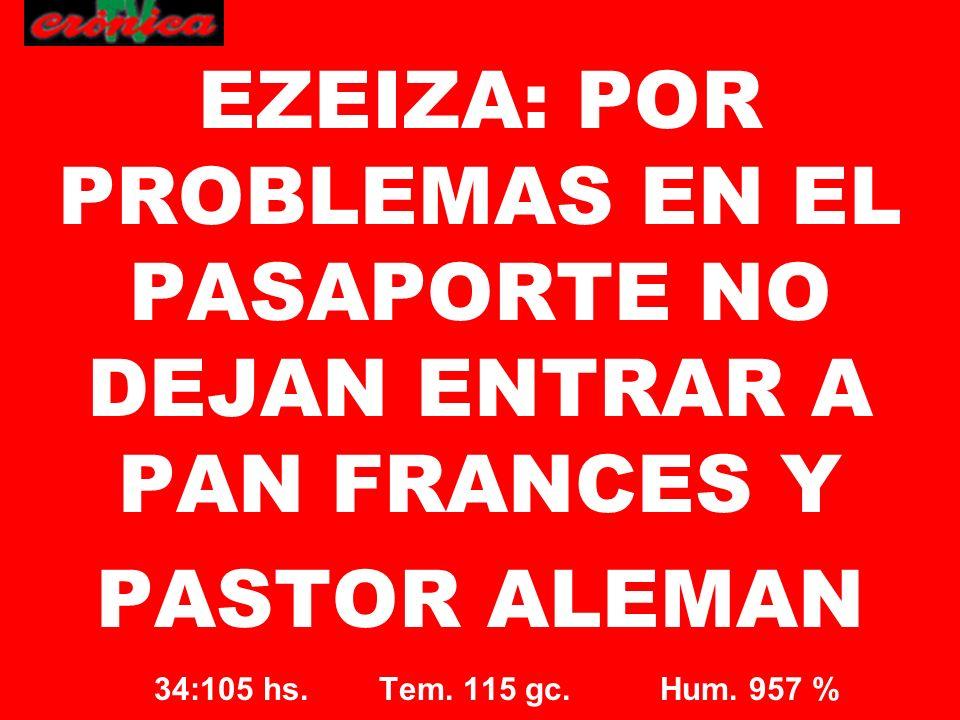 34:105 hs. Tem. 115 gc. Hum. 957 % EZEIZA: POR PROBLEMAS EN EL PASAPORTE NO DEJAN ENTRAR A PAN FRANCES Y PASTOR ALEMAN