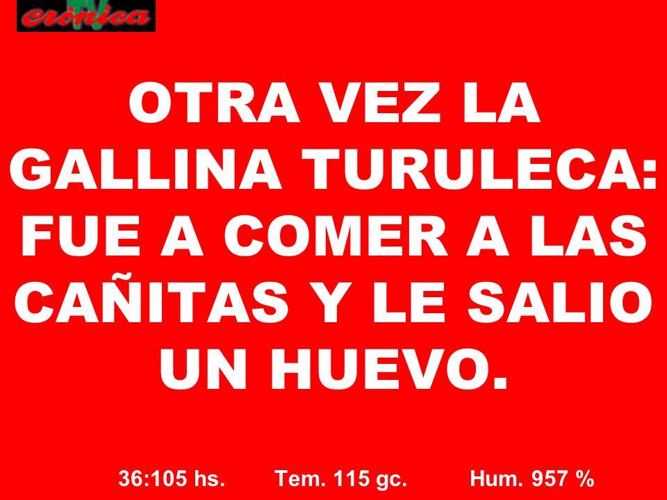 36:105 hs. Tem. 115 gc. Hum. 957 % OTRA VEZ LA GALLINA TURULECA: FUE A COMER A LAS CAÑITAS Y LE SALIO UN HUEVO.