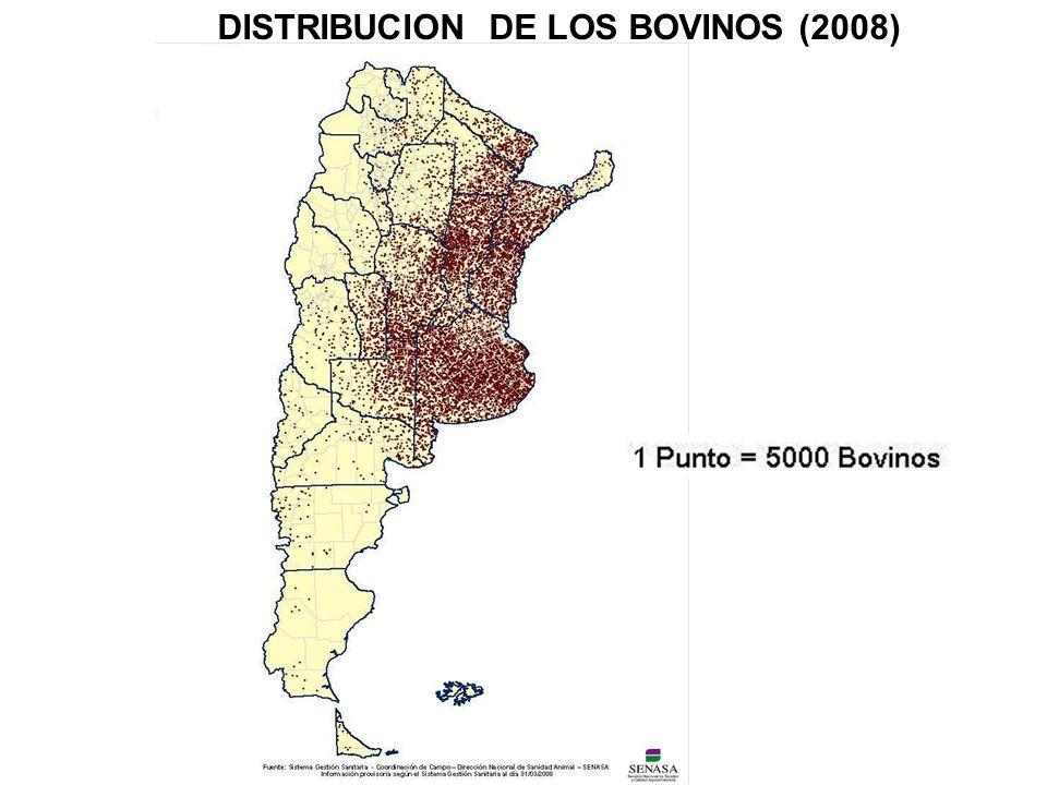 DISTRIBUCION DE LOS BOVINOS (2008)