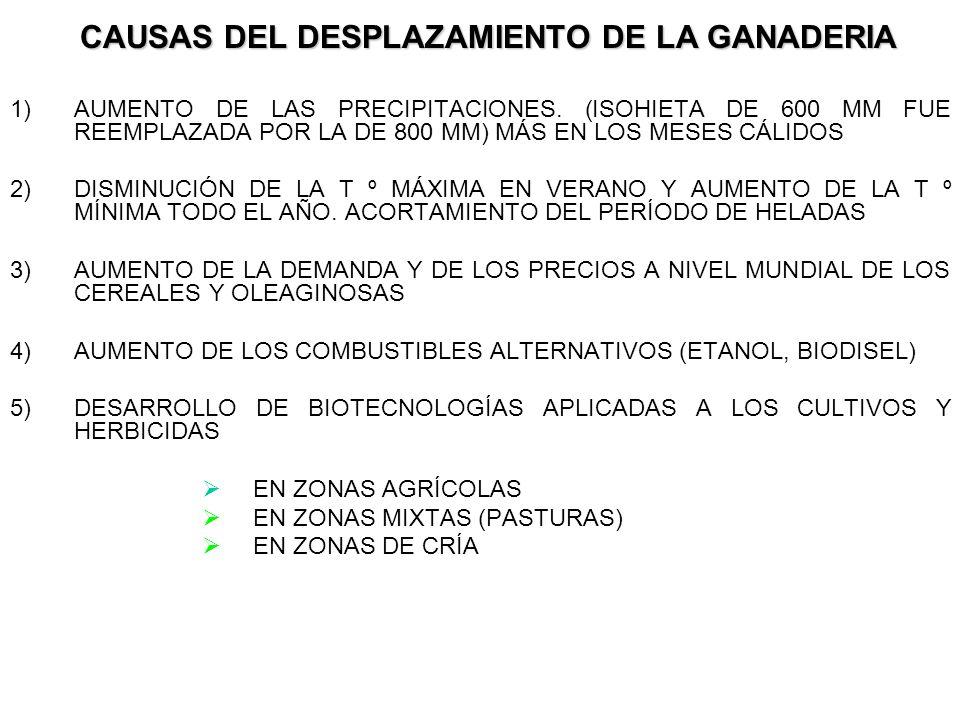 CAUSAS DEL DESPLAZAMIENTO DE LA GANADERIA 1)AUMENTO DE LAS PRECIPITACIONES.