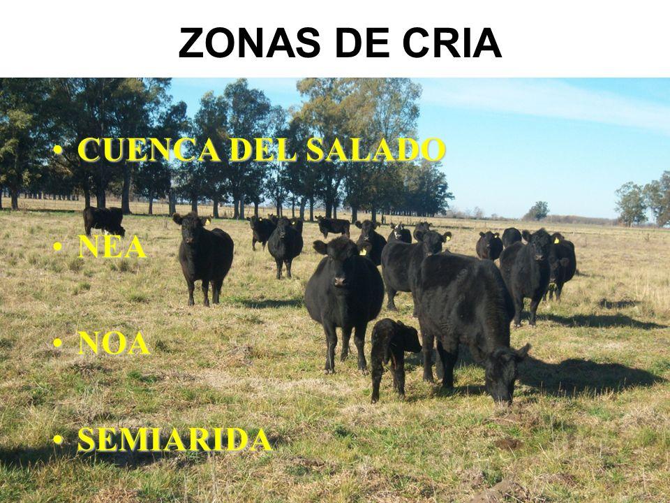 ZONAS DE CRIA CUENCA DEL SALADOCUENCA DEL SALADO NEANEA NOANOA SEMIARIDASEMIARIDA
