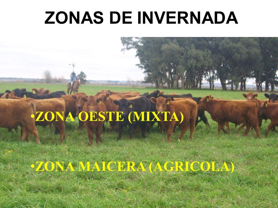 ZONAS DE INVERNADA ZONA OESTE (MIXTA) ZONA MAICERA (AGRICOLA)