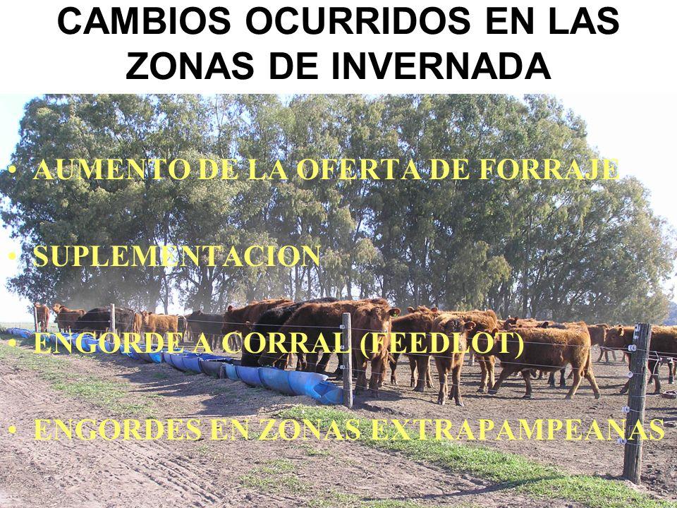 CAMBIOS OCURRIDOS EN LAS ZONAS DE INVERNADA AUMENTO DE LA OFERTA DE FORRAJE SUPLEMENTACION ENGORDE A CORRAL (FEEDLOT) ENGORDES EN ZONAS EXTRAPAMPEANAS