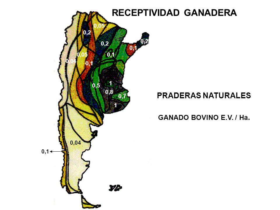 0,04 0,1 0,2 0,1 0,2 0,7 0,05 0,8 PRADERAS NATURALES GANADO BOVINO E.V.