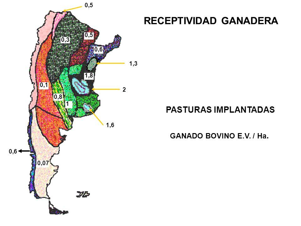 0,6 0,5 0,3 1 2 1,8 1,3 1,6 1,3 0,5 0,6 1 0,8 0,3 1,3 0,1 0,6 0,07 0,5 1 1,8 PASTURAS IMPLANTADAS GANADO BOVINO E.V.