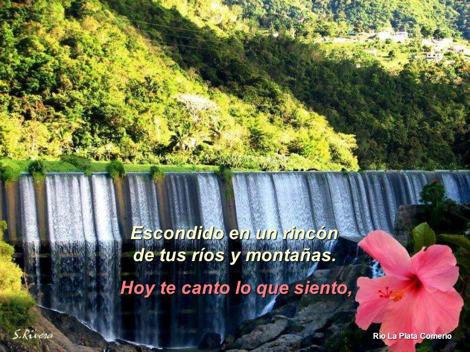 Puerto Rico de mi alma, te dejo mi corazón, escondido en un rincón de tus ríos y montañas de tus ríos y montañas. Lago Caonillas Utuado