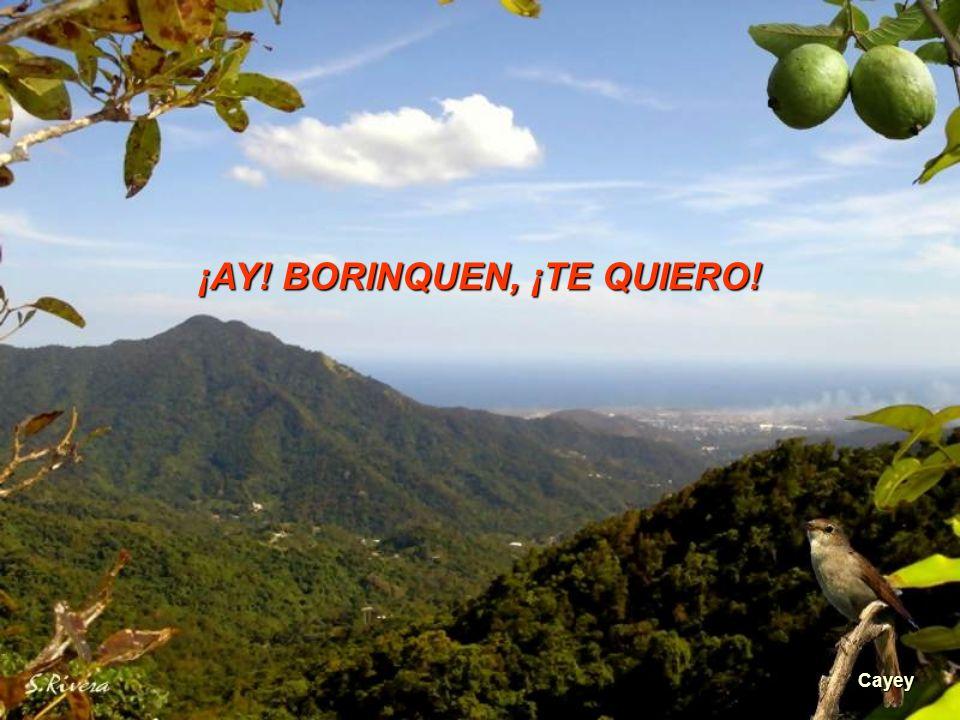 Sur de Puerto Rico antes de Salinas Sentimiento borinqueño, porque digo lo que siento. Sentimiento borinqueño, yo vengo de monte adentro. Sentimiento