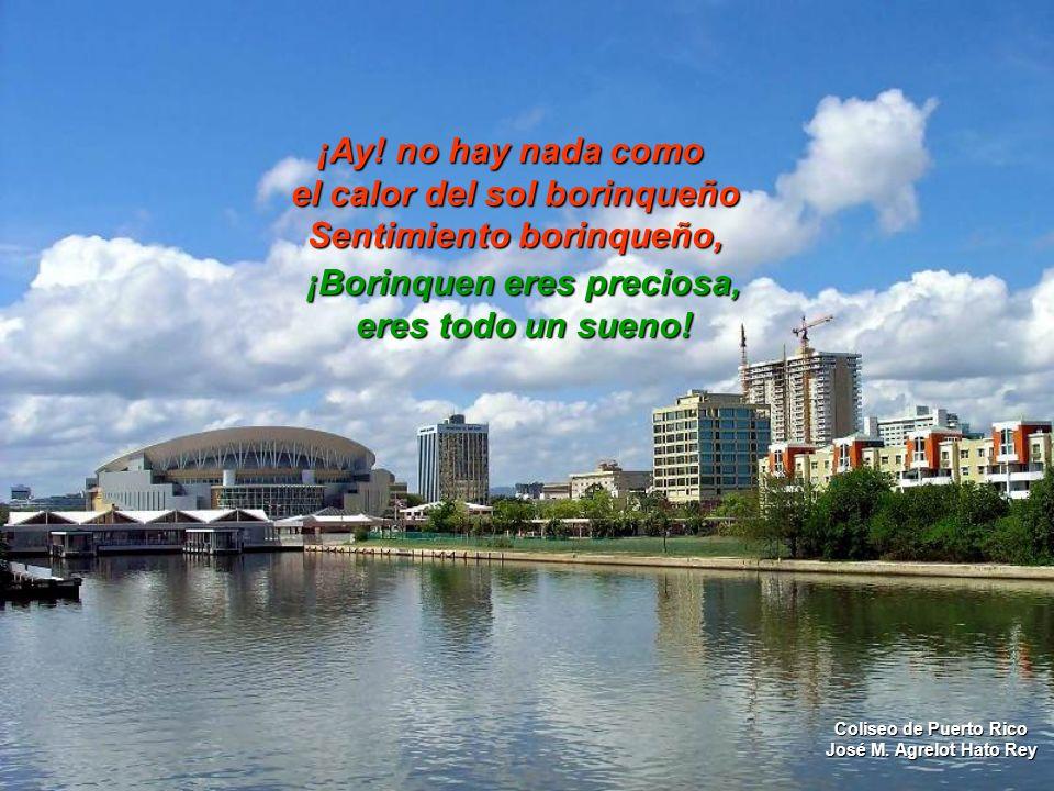 Sentimiento borinqueño, en mi corazón no falta un latido. Latido para mi islita, para mi bello Puerto Rico. Lago Carraizo Trujillo Alto