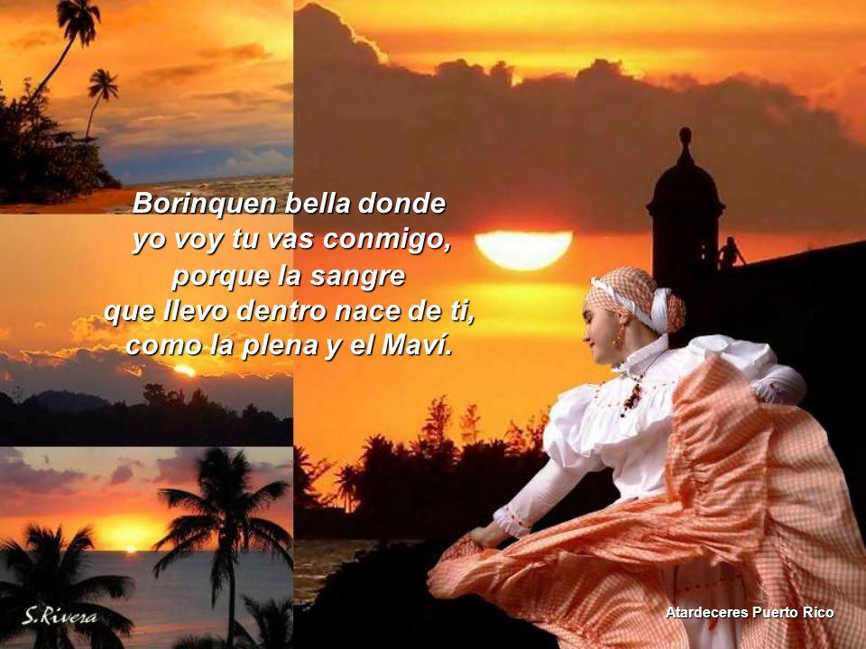 Puerto Rico vives tan dentro de mi, Lago Las Garzas Adjuntas tu bandera es mi orgullo como el canto del coqui.
