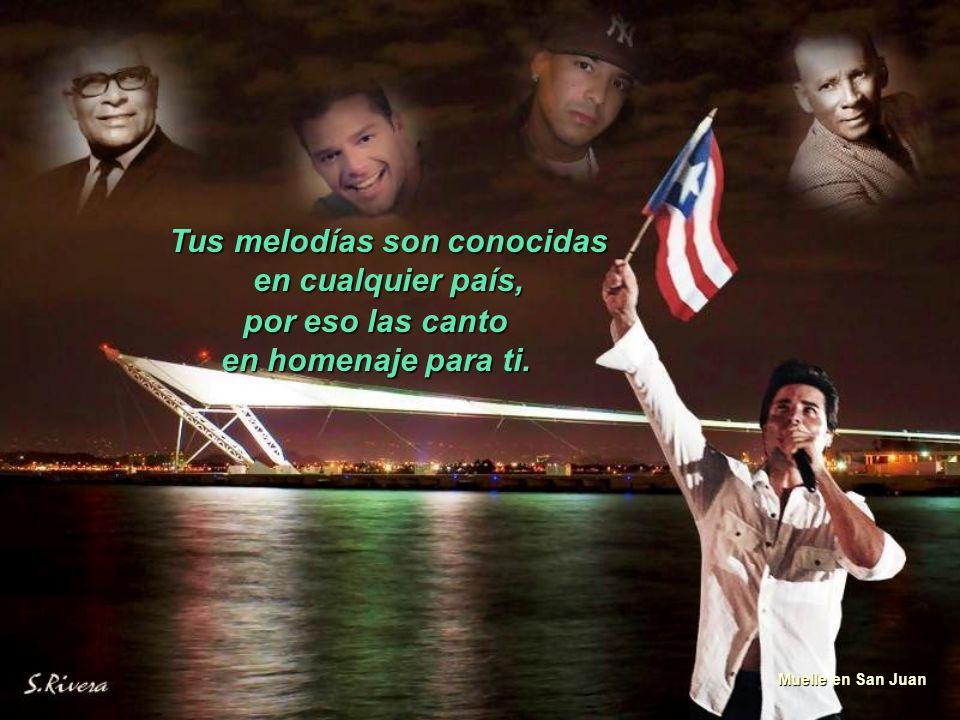 Borinquen bella donde yo voy tu vas conmigo, Atardeceres Puerto Rico porque la sangre que llevo dentro nace de ti, como la plena y el Maví.