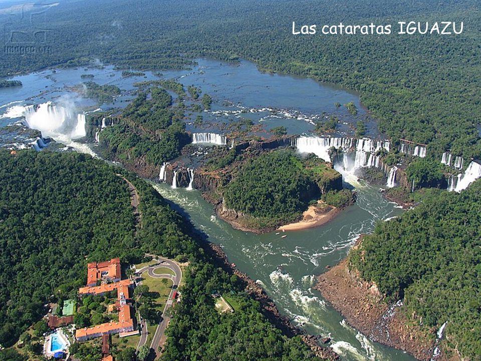 Las cataratas siguientes son, de hecho, casi 270 cascadas escalonándose sobre una distancia de 2,7 kilómetros en el río Iguazu. Algunas de las catarat