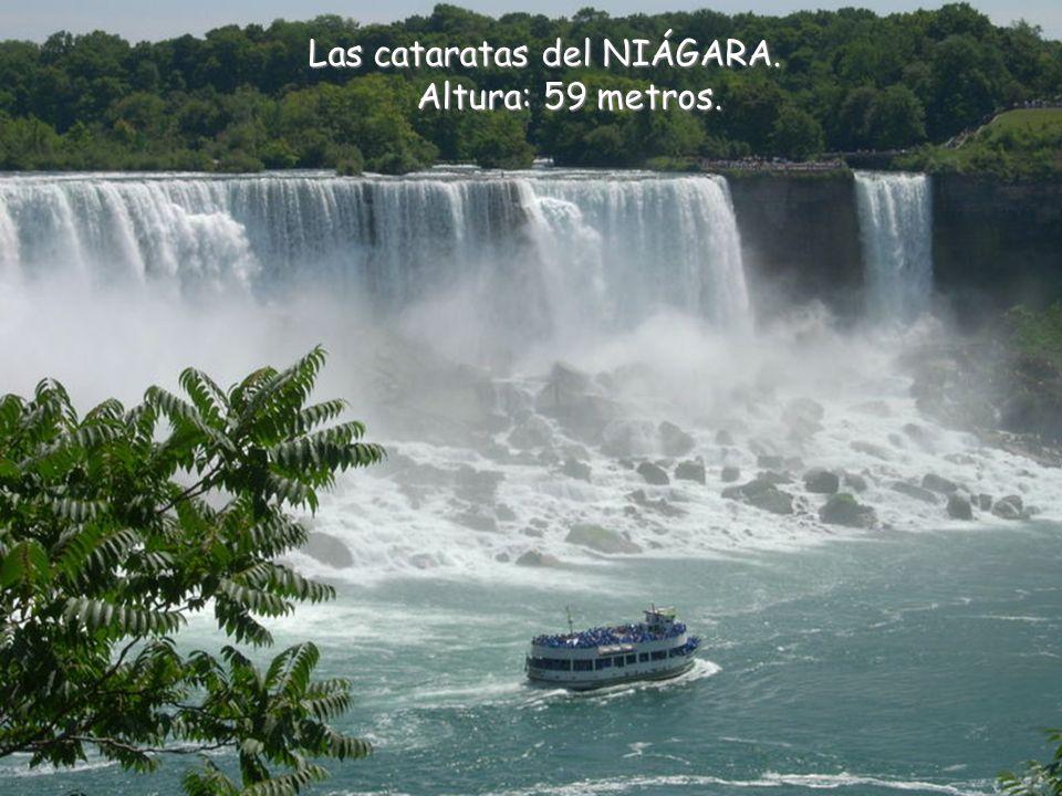 Las cataratas siguientes son, de hecho, casi 270 cascadas escalonándose sobre una distancia de 2,7 kilómetros en el río Iguazu.