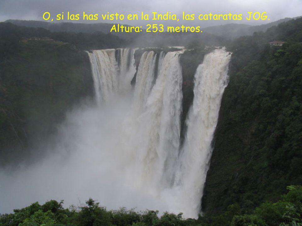 O, si las has visto en la India, las cataratas JOG. Altura: 253 metros.