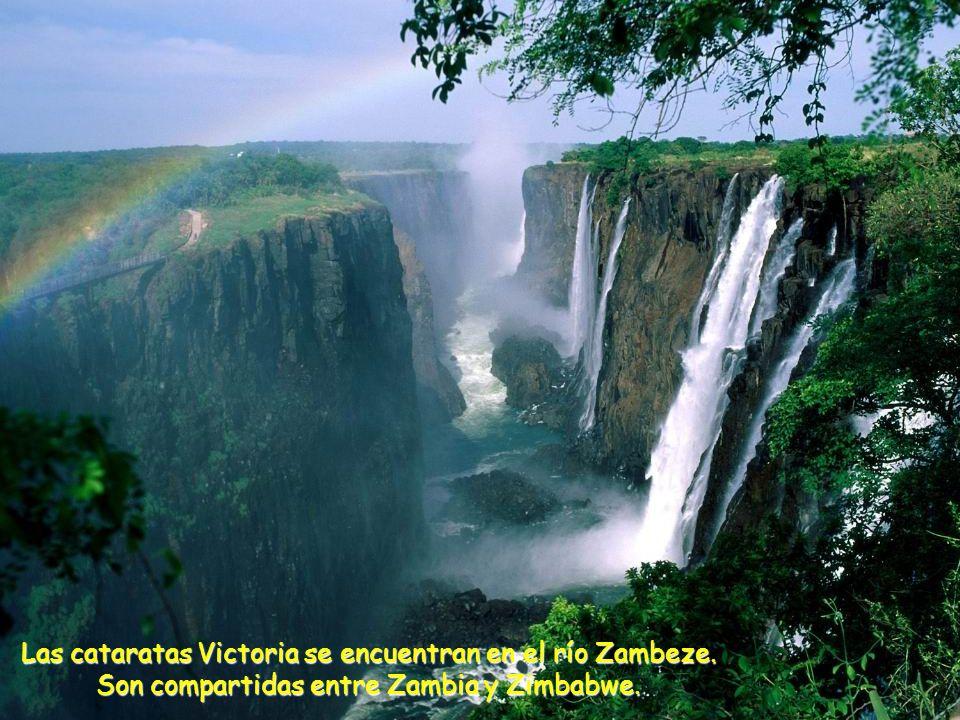 Las cataratas Victoria se encuentran en el río Zambeze. Son compartidas entre Zambia y Zimbabwe.