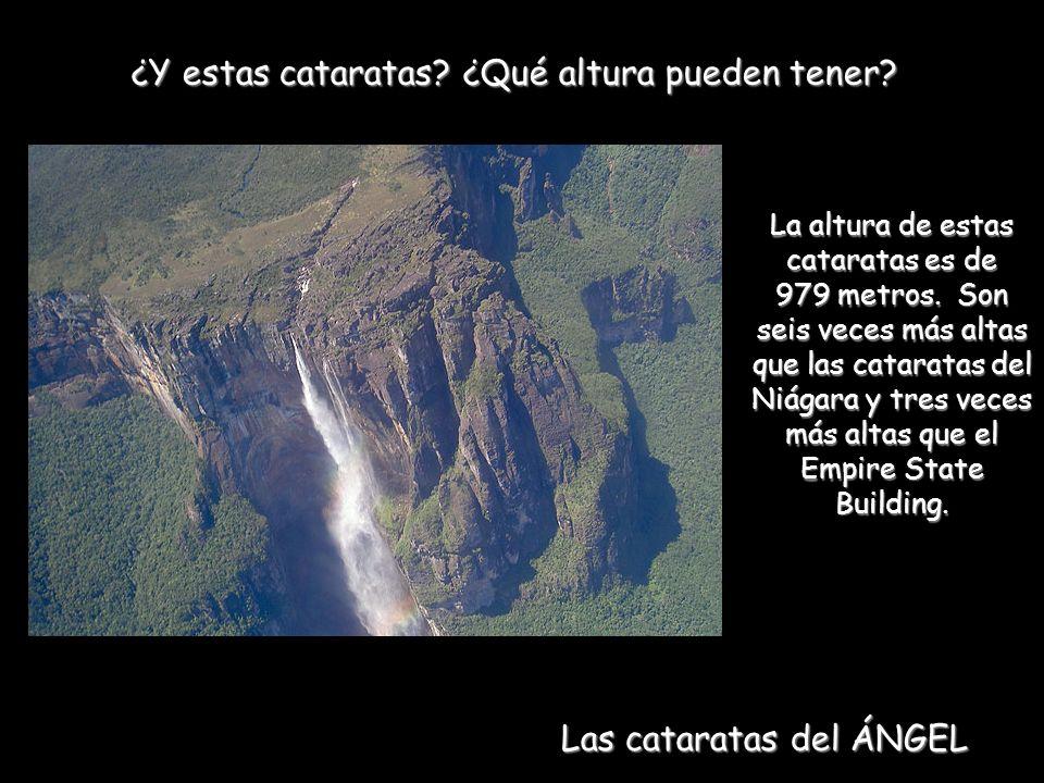 ¿Y estas cataratas.¿Qué altura pueden tener. La altura de estas cataratas es de 979 metros.