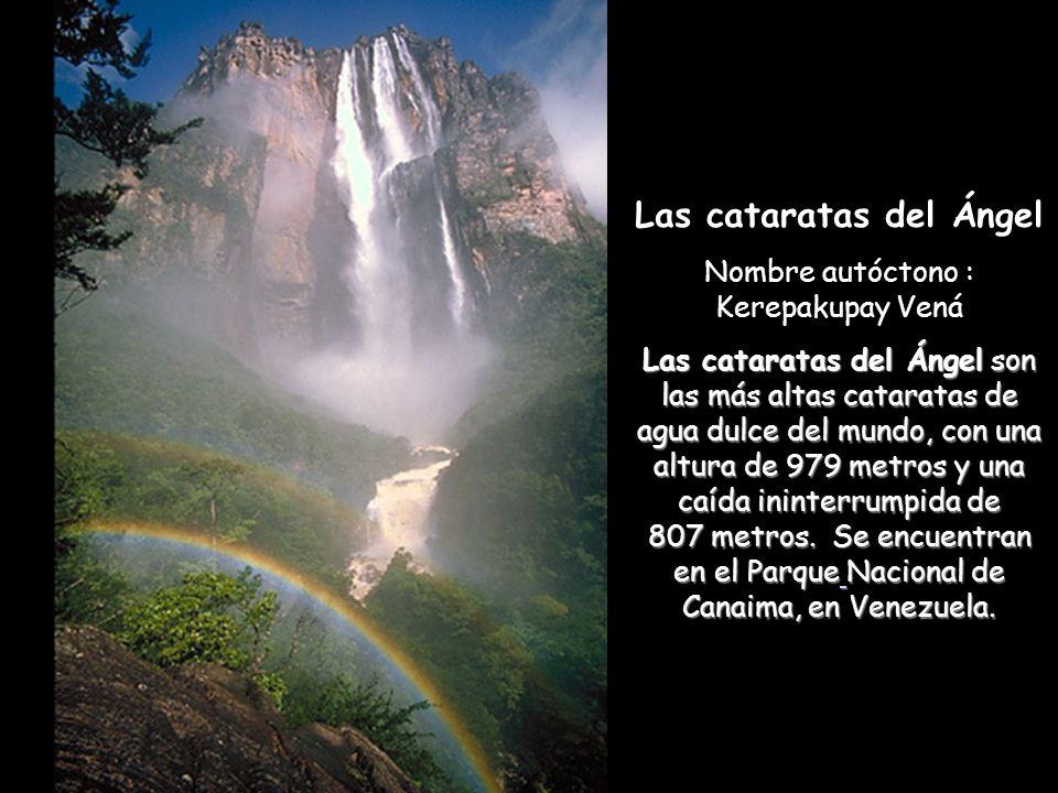 Las cataratas del Ángel Nombre autóctono : Kerepakupay Vená Las cataratas del Ángel son las más altas cataratas de agua dulce del mundo, con una altura de 979 metros y una caída ininterrumpida de 807 metros.