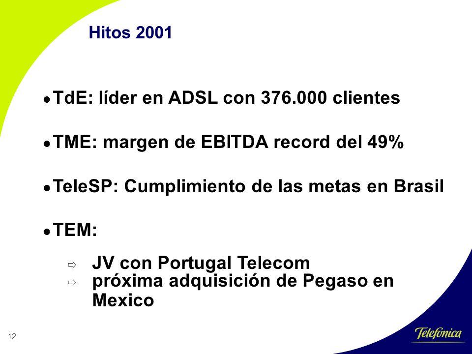 12 Hitos 2001 TdE: líder en ADSL con 376.000 clientes TME: margen de EBITDA record del 49% TeleSP: Cumplimiento de las metas en Brasil TEM: JV con Portugal Telecom próxima adquisición de Pegaso en Mexico