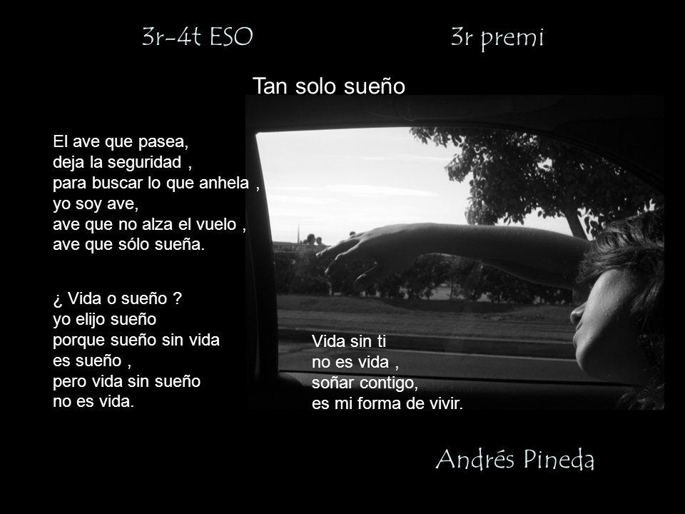 3r-4t ESO 3r premi Andrés Pineda Tan solo sueño El ave que pasea, deja la seguridad, para buscar lo que anhela, yo soy ave, ave que no alza el vuelo, ave que sólo sueña.