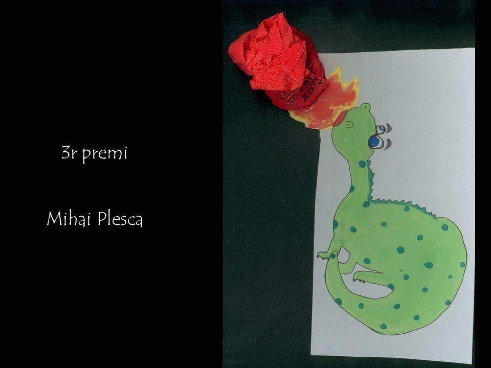 3r premi Mihai Plesca