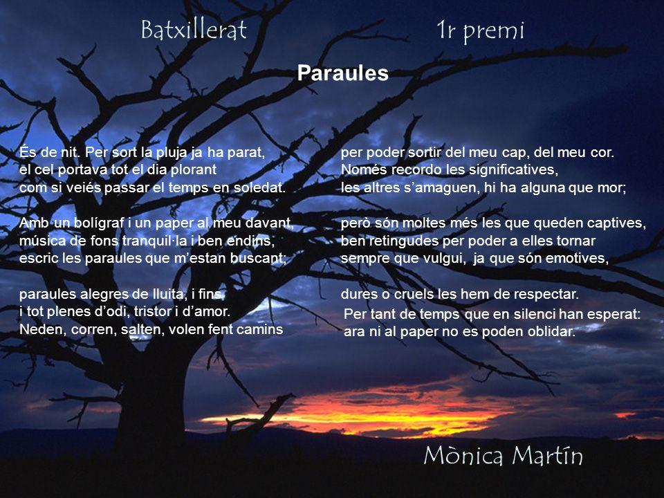 Batxillerat 1r premi Mònica Martín Paraules És de nit. Per sort la pluja ja ha parat, el cel portava tot el dia plorant com si veiés passar el temps e