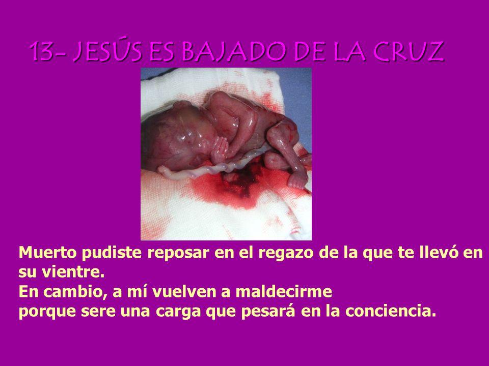 12-JESÚS MUERE EN LA CRUZ Tú mueres. ¡Yo también! Tu eres inocente, yo también. Acuérdate de mí cuando entres en tu Reino, en tu Reino de la Vida Eter
