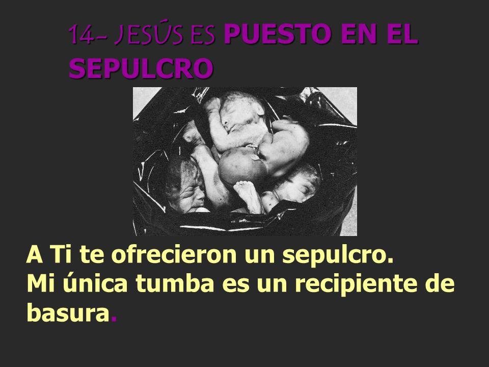 13- JESÚS ES BAJADO DE LA CRUZ Muerto pudiste reposar en el regazo de la que te llevó en su vientre. En cambio, a mí vuelven a maldecirme porque sere