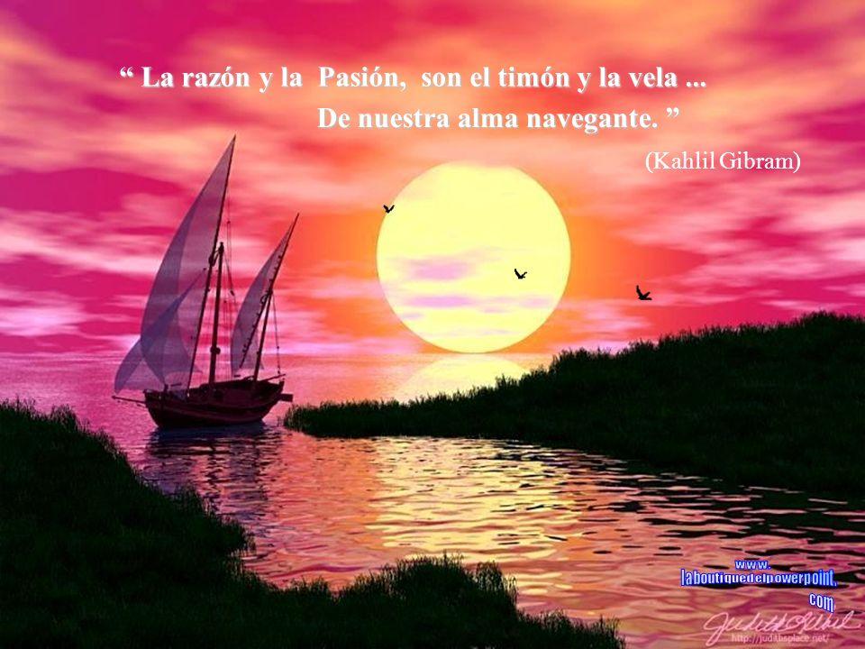 No existe viento favorable... No existe viento favorable...... para el marinero que no sabe a donde ir. no sabe a donde ir. (Seneca)