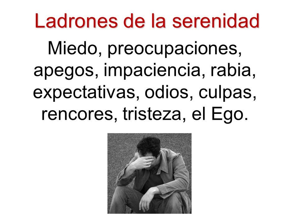 Ladrones de la serenidad Miedo, preocupaciones, apegos, impaciencia, rabia, expectativas, odios, culpas, rencores, tristeza, el Ego.