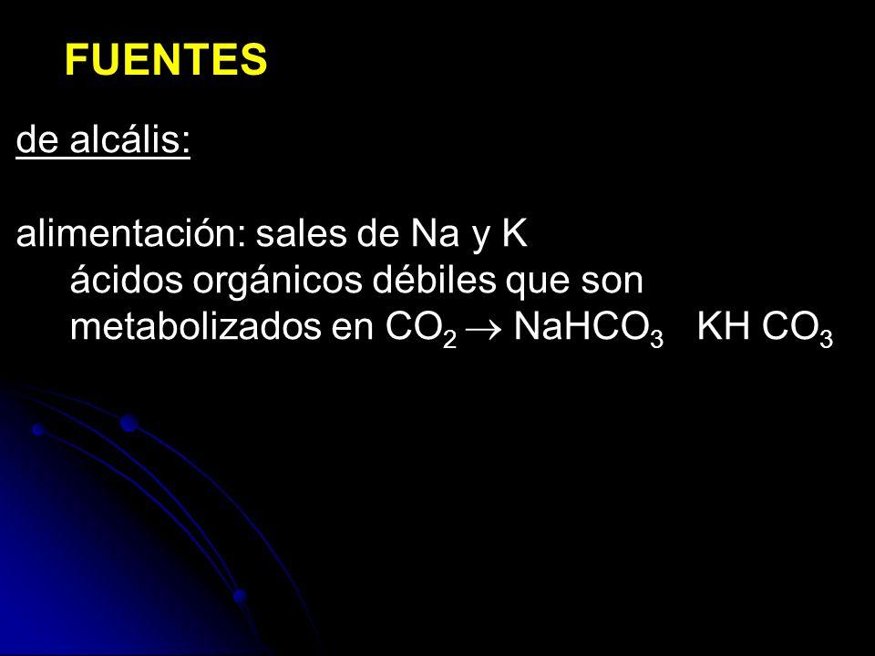 FUENTES de alcális: alimentación: sales de Na y K ácidos orgánicos débiles que son metabolizados en CO 2 NaHCO 3 KH CO 3