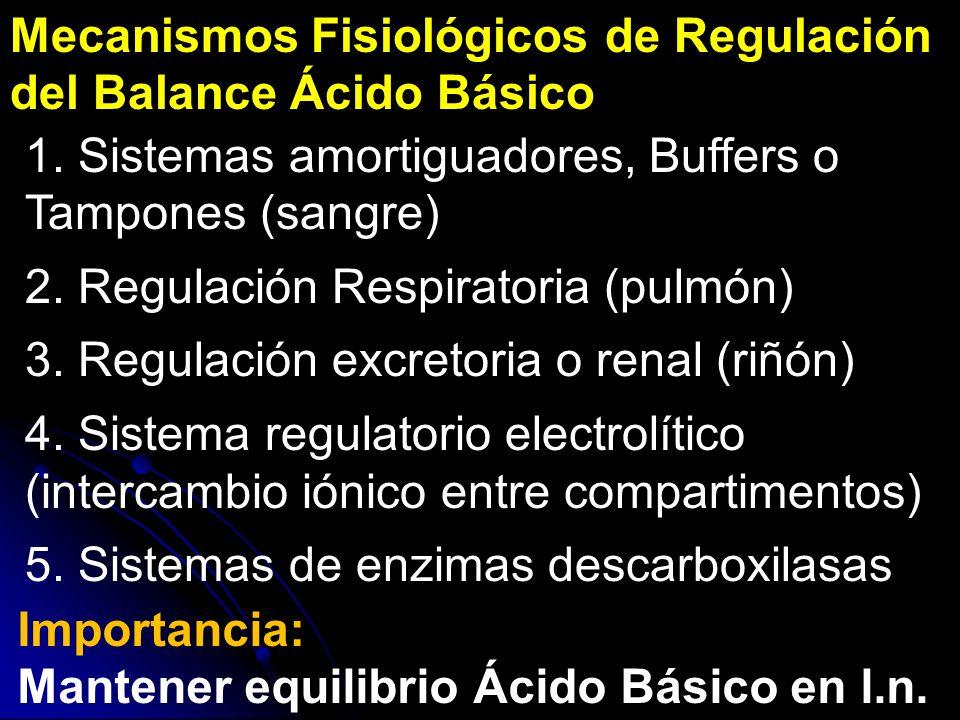 Mecanismos Fisiológicos de Regulación del Balance Ácido Básico Importancia: Mantener equilibrio Ácido Básico en l.n. 1. Sistemas amortiguadores, Buffe