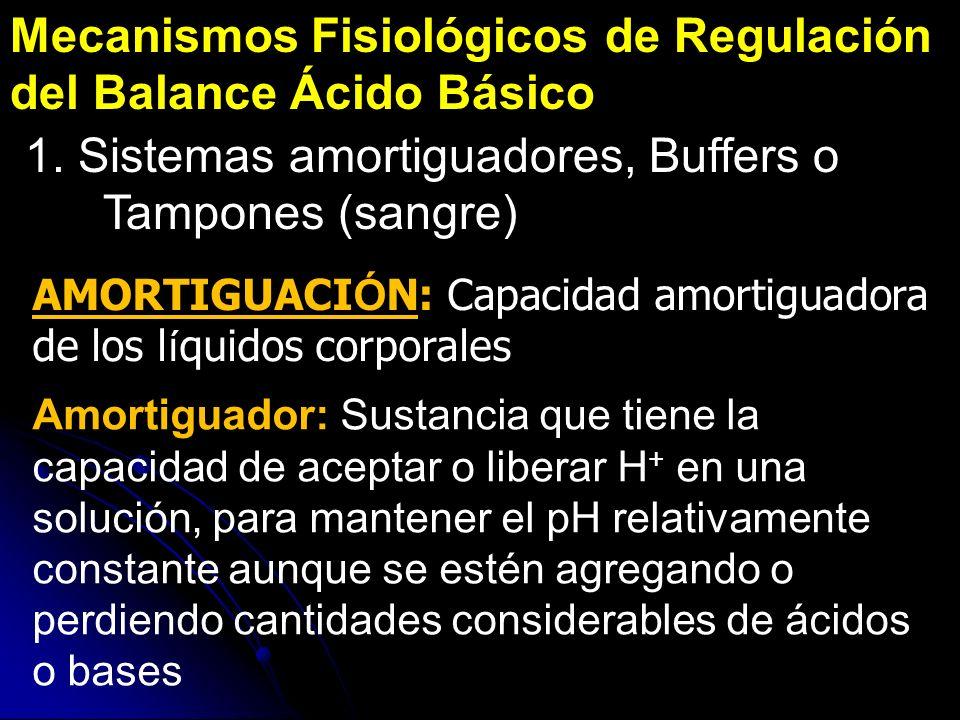Mecanismos Fisiológicos de Regulación del Balance Ácido Básico 1. Sistemas amortiguadores, Buffers o Tampones (sangre) AMORTIGUACI Ó N: Capacidad amor