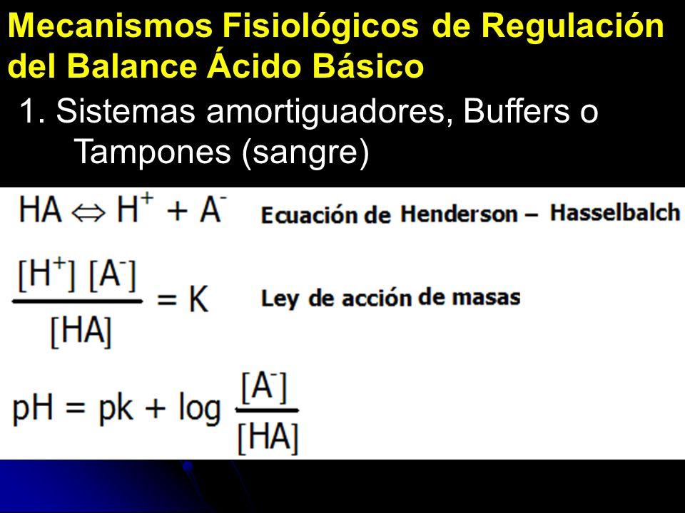 Mecanismos Fisiológicos de Regulación del Balance Ácido Básico 1. Sistemas amortiguadores, Buffers o Tampones (sangre)