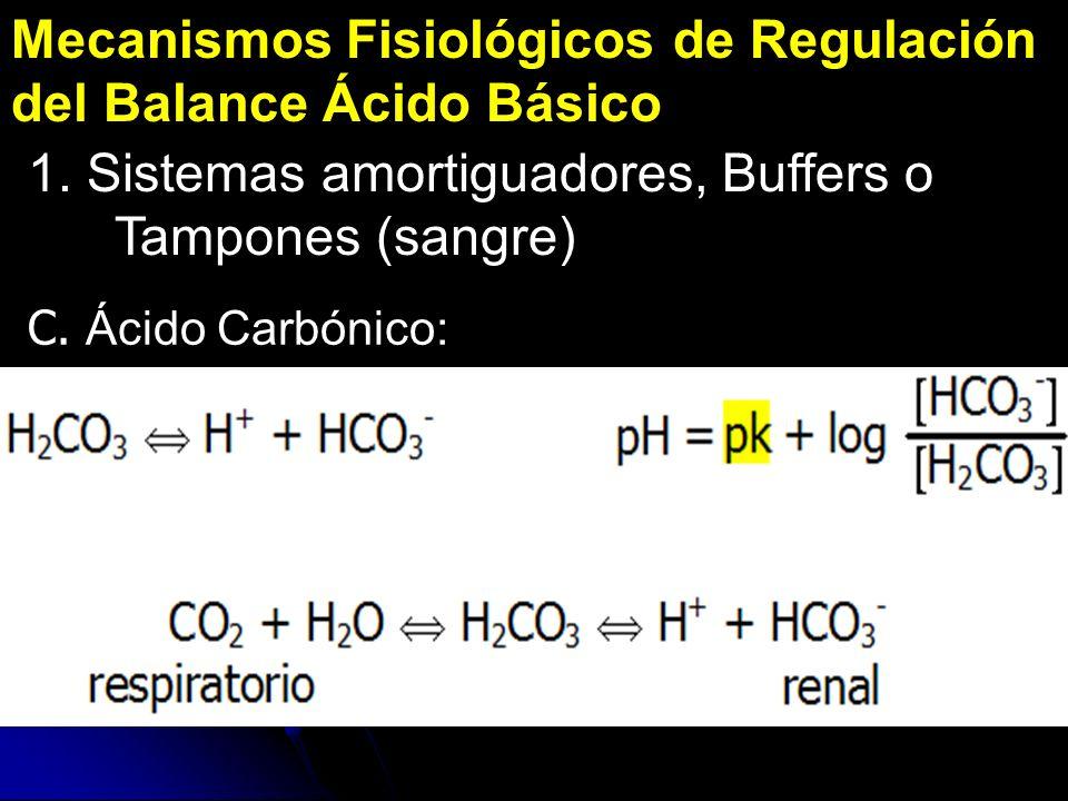 Mecanismos Fisiológicos de Regulación del Balance Ácido Básico 1. Sistemas amortiguadores, Buffers o Tampones (sangre) C. Ácido Carbónico: