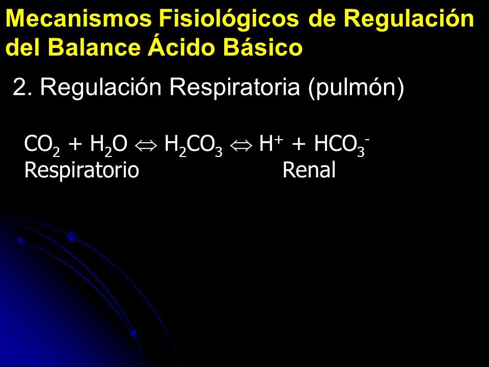 Mecanismos Fisiológicos de Regulación del Balance Ácido Básico CO 2 + H 2 O H 2 CO 3 H + + HCO 3 - Respiratorio Renal 2. Regulación Respiratoria (pulm