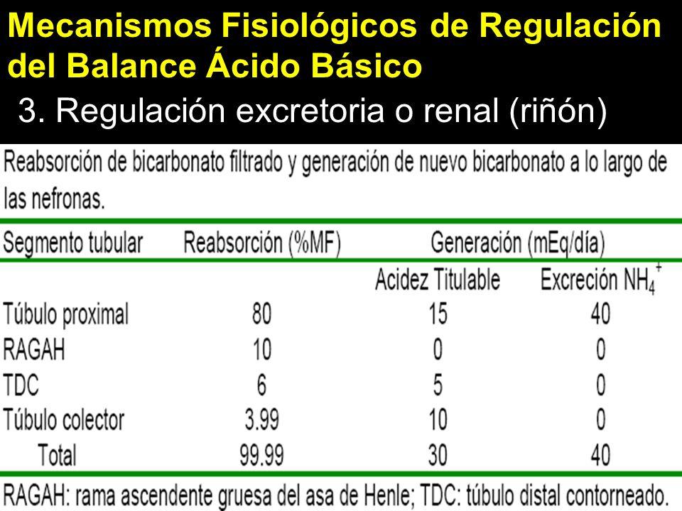 Mecanismos Fisiológicos de Regulación del Balance Ácido Básico 3.