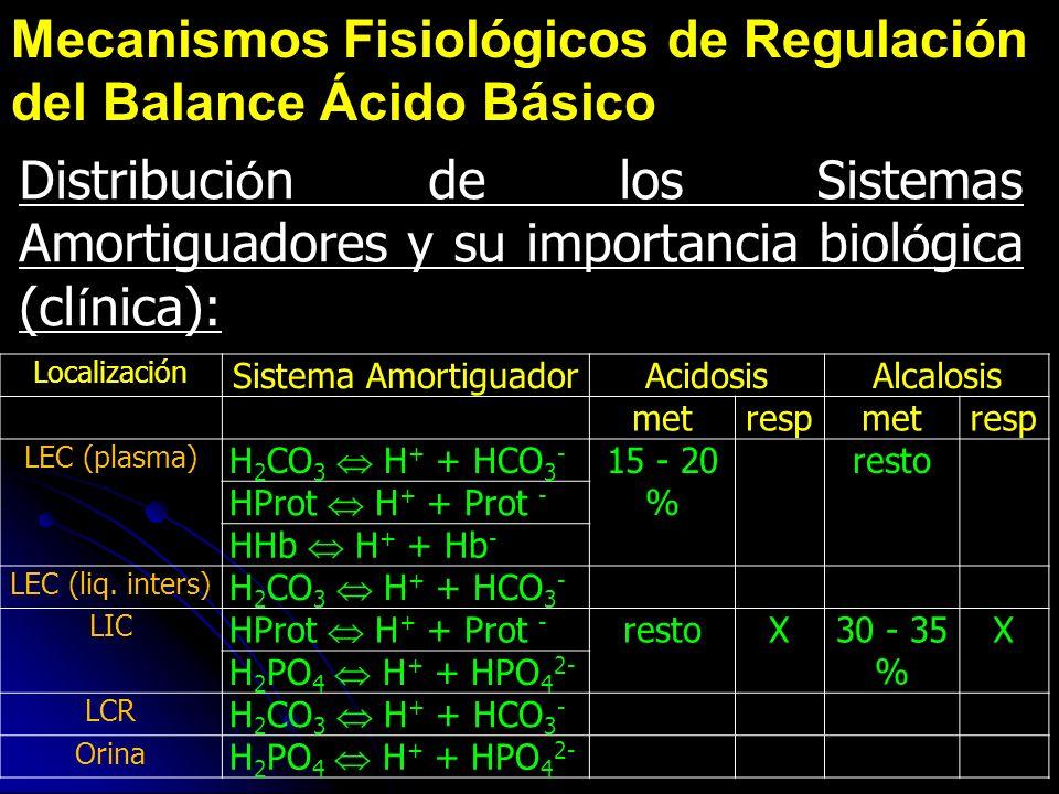 Distribuci ó n de los Sistemas Amortiguadores y su importancia biol ó gica (cl í nica): Localización Sistema AmortiguadorAcidosisAlcalosis metrespmetr