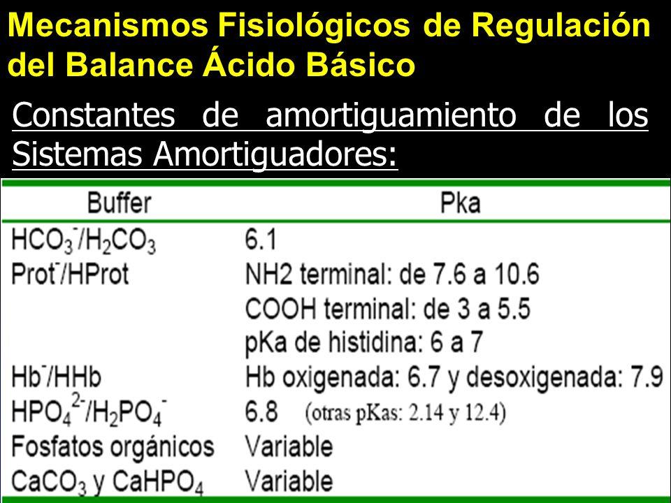 Mecanismos Fisiológicos de Regulación del Balance Ácido Básico Constantes de amortiguamiento de los Sistemas Amortiguadores: