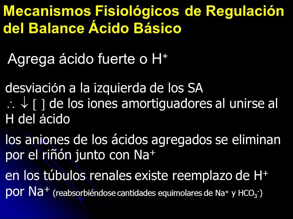 Mecanismos Fisiológicos de Regulación del Balance Ácido Básico Agrega ácido fuerte o H + desviaci ó n a la izquierda de los SA de los iones amortiguad