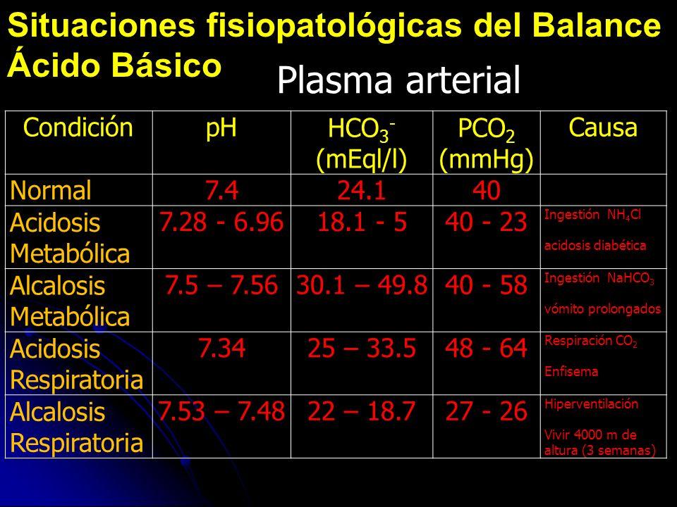 Situaciones fisiopatológicas del Balance Ácido Básico CondiciónpHHCO 3 - (mEql/l) PCO 2 (mmHg) Causa Normal7.424.140 Acidosis Metabólica 7.28 - 6.9618