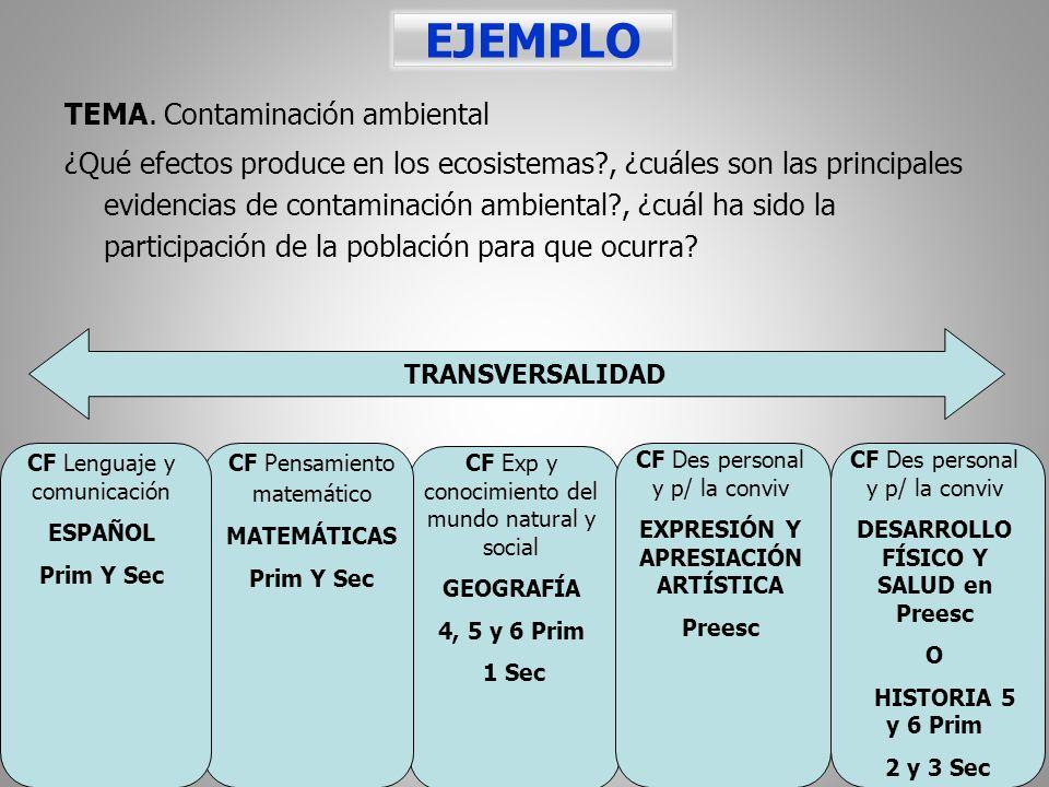 EJEMPLO TEMA. Contaminación ambiental ¿Qué efectos produce en los ecosistemas?, ¿cuáles son las principales evidencias de contaminación ambiental?, ¿c