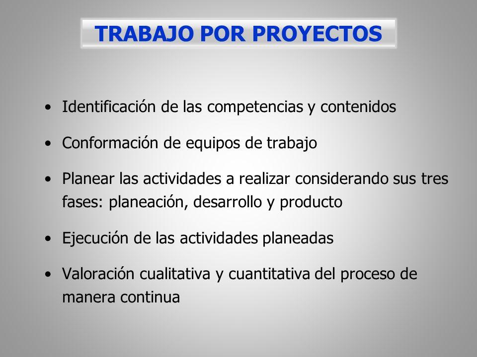 Identificación de las competencias y contenidos Conformación de equipos de trabajo Planear las actividades a realizar considerando sus tres fases: pla