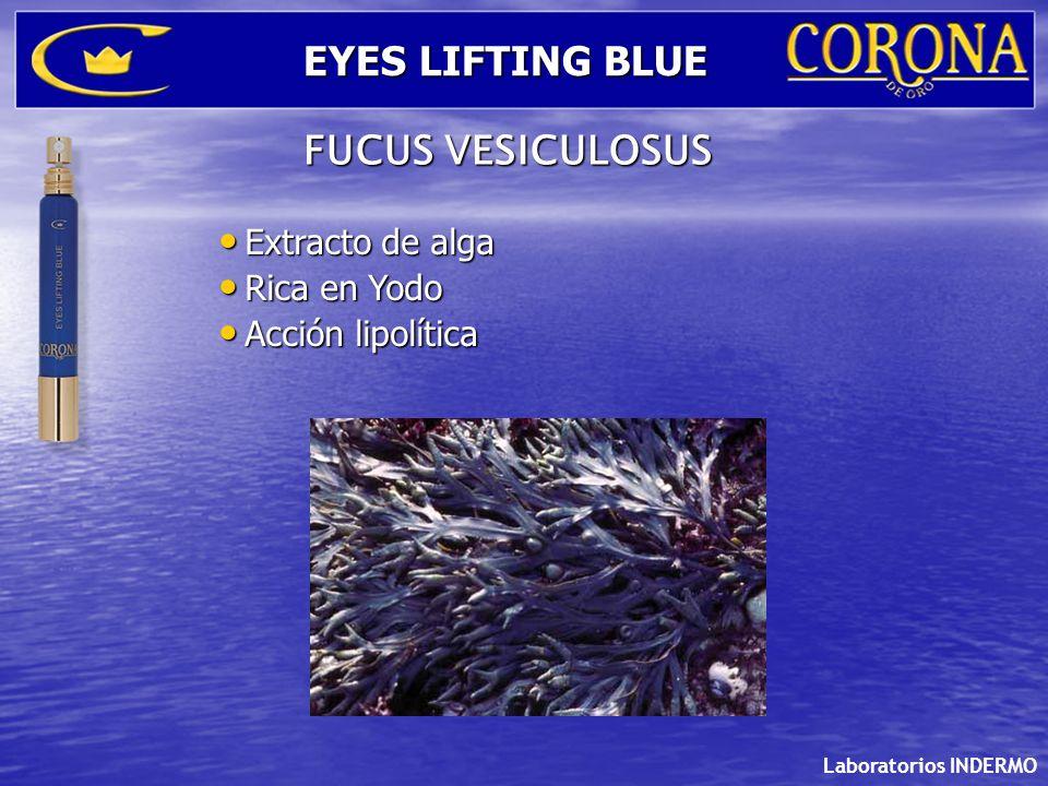 Extracto de alga Extracto de alga Rica en Yodo Rica en Yodo Acción lipolítica Acción lipolítica Laboratorios INDERMO EYES LIFTING BLUE FUCUS VESICULOS