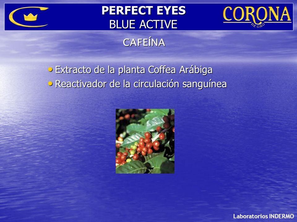 Extracto de la planta Coffea Arábiga Extracto de la planta Coffea Arábiga Reactivador de la circulación sanguínea Reactivador de la circulación sanguí