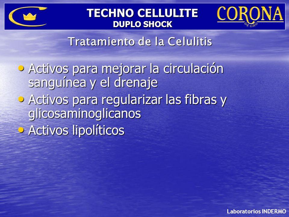 Laboratorios INDERMO TECHNO CELLULITE DUPLO SHOCK Lipolísis. Metabolismo de las grasas.