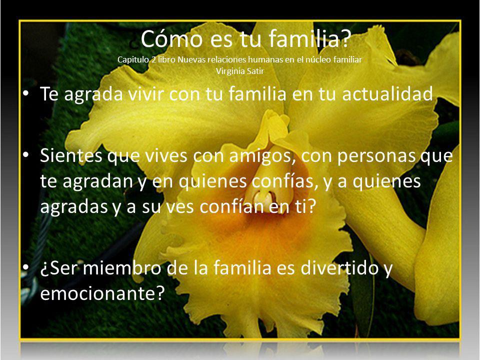 ¿Cómo es tu familia.
