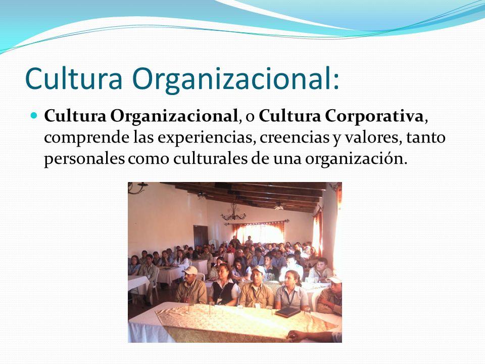 Cultura Organizacional: Cultura Organizacional, o Cultura Corporativa, comprende las experiencias, creencias y valores, tanto personales como cultural